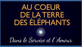Au-Coeur-Terre-Elephants