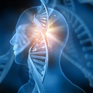 WA-Implants
