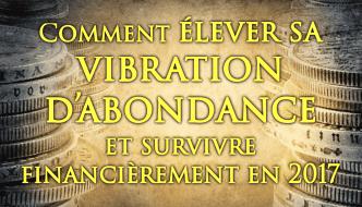 Élever sa VIBRATION D'ABONDANCE et Survivre Financièrement