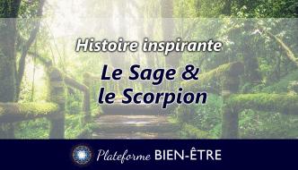 image-histoire-sage-scorpion