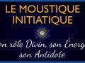 moustique-initiatique-energie-signification