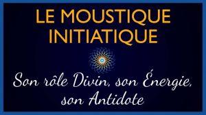 Le rôle Divin du Moustique : Signification, énergies
